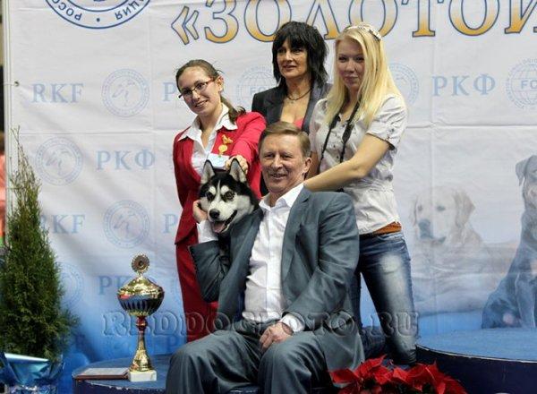 Лучший юный хендлер 2010 года А. Гончарова